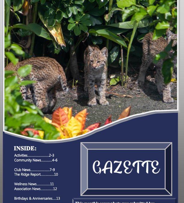 September 2019 Gazette